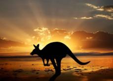 Les Australiens sont ceux qui dépensent le plus en jeux d'argent par an