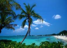 Le Bahamas pourrait légaliser ses jeux de casino en ligne