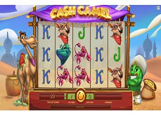 Cash Camel, le retour d'iSoftBet avec une machine à sous orientale