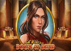 Casinos en ligne Play'n Go : Cat Wilde est la digne héritière de Rich Wilde !