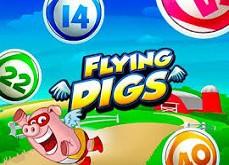 Vikings go Berzerk et nouveau jeu de video bingo gratuit avec Flying Pigs