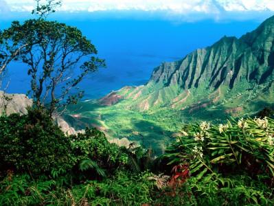 Hawaï - Nouvelle tentative d'introduire les jeux d'argent en ligne légaux