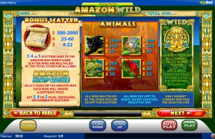 aperçu jeu Amazon Wild 2