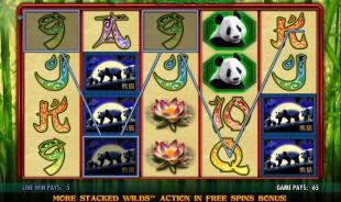 aperçu jeu 100 Pandas 1