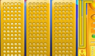 aperçu jeu Bingo 1