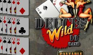 aperçu jeu Deuces Wild 2