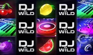 aperçu jeu DJ Wild 1