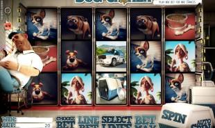 aperçu jeu Dog Casher 1