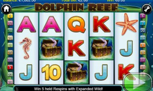 Dolphin Reef free game