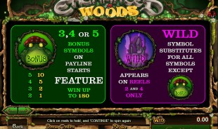 aperçu jeu Enchanted Woods 2