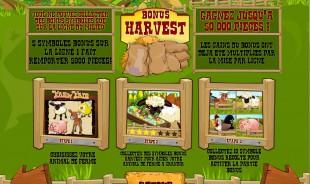 aperçu jeu Farm Fair 2