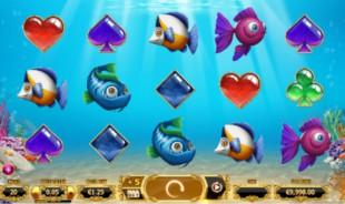 jeu Golden Fish Tank