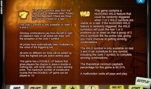aperçu jeu goldSlam 2