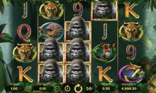 jeu Gorilla Kindgom