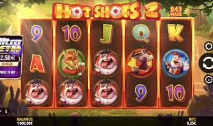 jeu Hot Shots 2