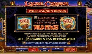 aperçu jeu Loose Cannon 2
