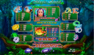 aperçu jeu Magic Forest 2