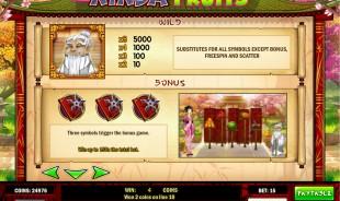 aperçu jeu Ninja Fruit 2