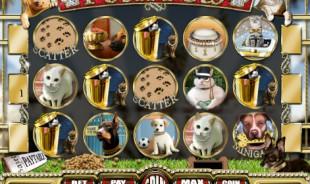 jeu Posh Pets