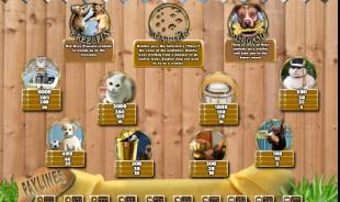 aperçu jeu Posh Pets 2