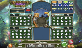 jeu Rainforest Magic Bingo