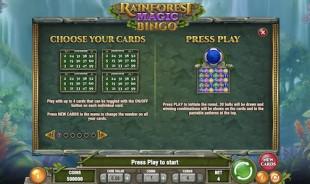 aperçu jeu Rainforest Magic Bingo 2