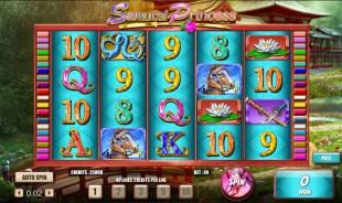 aperçu jeu Samurai Princess 2