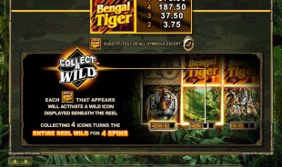 aperçu jeu Untamed Bengal Tiger 2