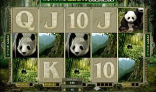jeu Untamed Giant Panda