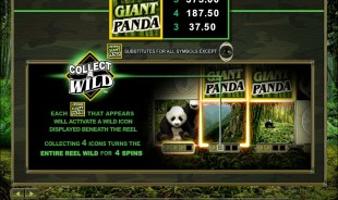 aperçu jeu Untamed Giant Panda 2