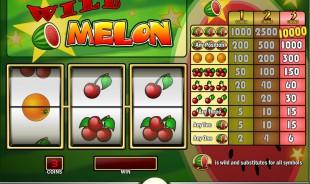 jeu Wild Melon