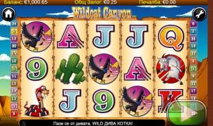 aperçu jeu WildCat Canyon 1