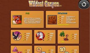 aperçu jeu WildCat Canyon 2