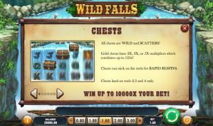 aperçu jeu Wild Falls 2