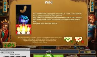 aperçu jeu Wild Rockets 2