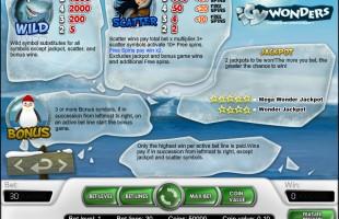 aperçu jeu Icy Wonders 2