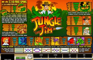 aperçu jeu Jungle Jim 2