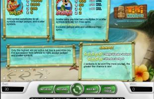 aperçu jeu Tiki Wonders 2