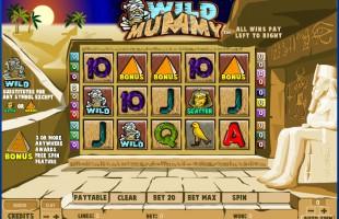 aperçu jeu Wild Mummy 1