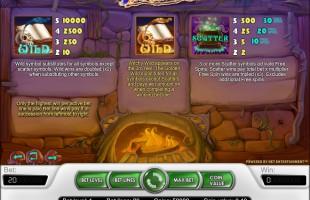 aperçu jeu Wild Witches 2
